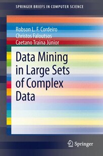 Data Mining in Large Sets of Complex Data