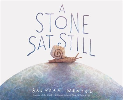 A Stone Sat Still: (environmental And Nature Picture Book For Kids, Perspective Book For Preschool And Kindergarten, A by Brendan Wenzel