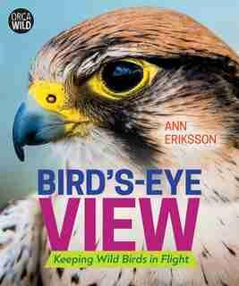 Bird's-eye View: Keeping Wild Birds In Flight by Ann Eriksson