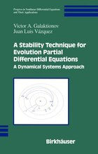 A Stability Technique for Evolution Partial Differential Equations: A Dynamical Systems Approach