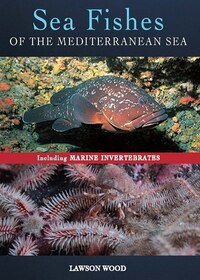 Sea Fishes Of The Mediterranean Including Marine Invertebrates: Including Marine Invertebrates