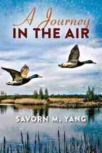 A Journey In The Air by Savorn M Yang