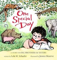 One Special Day [board Book] (a Story For Big Brothers And Sisters): A Story For Big Brothers And…