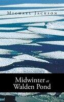 Midwinter at Walden Pond