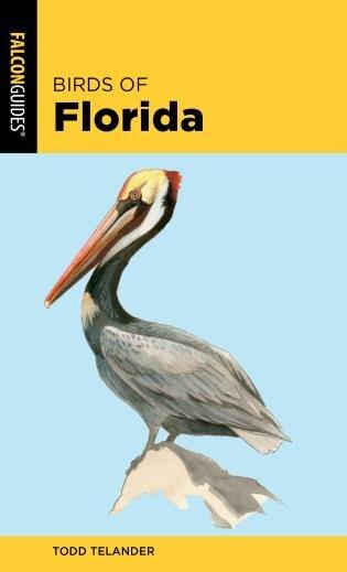 Birds Of Florida by Todd Telander