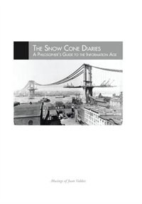 The Snow Cone Diaries: A Philosopher's Guide to the Information Age
