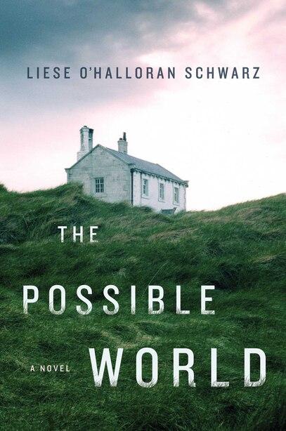 POSSIBLE WORLD: A Novel by L Schwarz