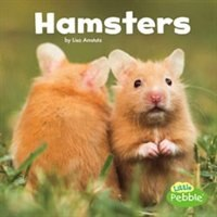 Hamsters, Book By Lisa J. Amstutz (Reinforced Library