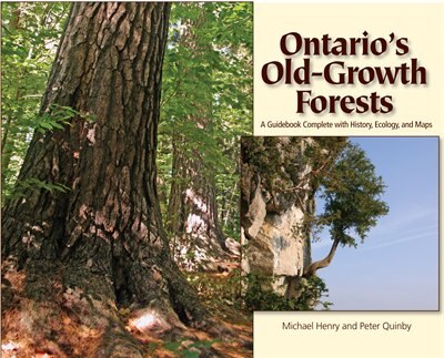 Ontario's Old Growth Forests by Michael Henry