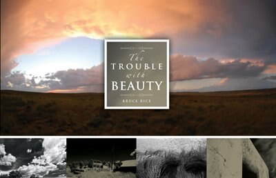The Trouble With Beauty by Bruce Rice
