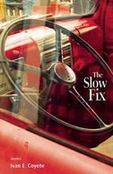 The Slow Fix by Ivan Coyote