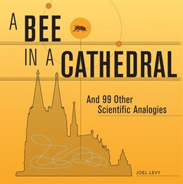 Book A Bee in a Cathedral: And 99 Other Scientific Analogies by Joel Levy