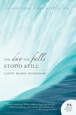 Book The Day the Falls Stood Still by Cathy Marie Buchanan