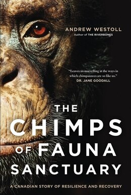 Book Chimps of Fauna Sanctuary by Andrew Westoll