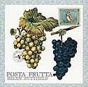 Posta Frutta - Postcard Book by Helen Buttfield