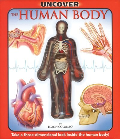 Uncover the Human Body: Take a Three-Dimensional Look Inside the Human Body by Luann Colombo