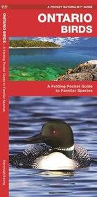 Ontario Birds: A Folding Pocket Guide To Familiar Species