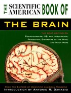 Scientific American Book Of The Brain: The Best Writing on Consciousness, I.Q. and Intelligence…