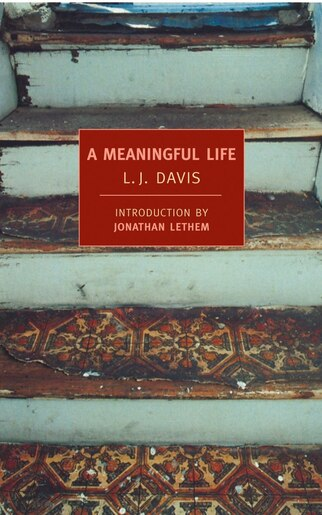 A Meaningful Life de L.J. Davis