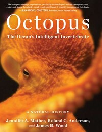 Octopus: The Ocean's Intelligent Invertebrate