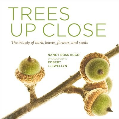 Trees Up Close: The Beauty Of Their Bark, Leaves, Flowers, And Seeds by Nancy Ross Hugo