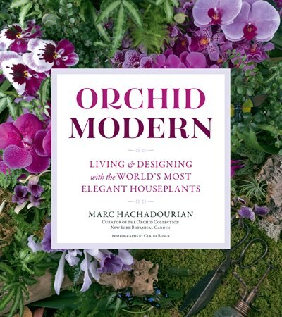 Orchid Modern: Living And Designing With The World's Most Elegant Houseplants by Marc Hachadourian