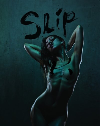 SLIP: Naked In Your Own Words by Allan Amato