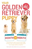 Your Golden Retriever Puppy Month By Month: Everything You Need To Know At Each Stage To Ensure…