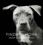 Finding Home: Shelter Dogs And Their Stories