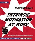 Intrinsic Motivation at Work: 2nd Edition: What Really Drives Employee Engagement
