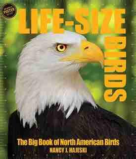 Life-size Birds: The Big Book Of North American Birds by Nancy J. Hajeski
