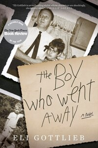 The Boy Who Went Away: A Novel