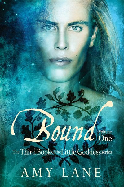 Bound, Vol. 1 by Amy Lane