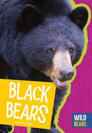 Black Bears by Tammy Gagne