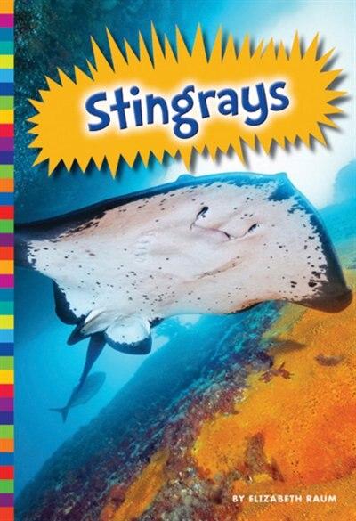 Stingrays by Elizabeth Raum