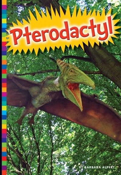 Pterodactyl by Barbara Alpert