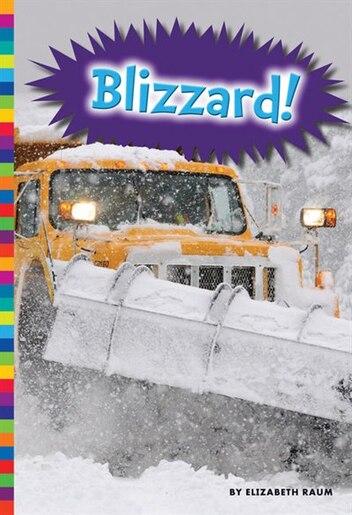 Blizzard! by Elizabeth Raum