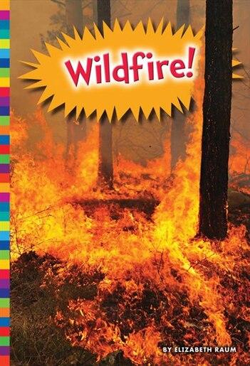 Wildfire! by Elizabeth Raum