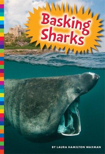 Basking Sharks by Laura Hamilton Waxman