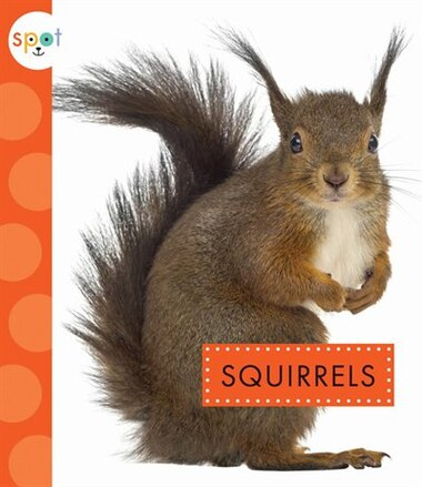 Squirrels by Wendy Strobel Dieker