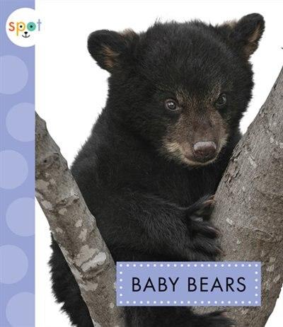 Baby Bears by K.C. Kelley
