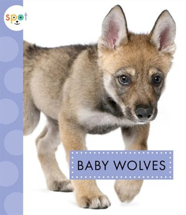 Baby Wolves by K.C. Kelley