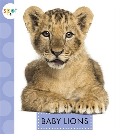 Baby Lions by K.C. Kelley