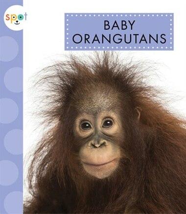 Baby Orangutans by K.C. Kelley