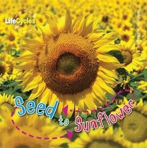 Seed To Sunflower by Camilla De La Bedoyere