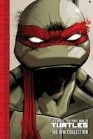 Teenage Mutant Ninja Turtles: The Idw Collection, Vol. 1
