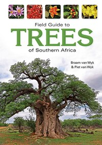 Field Guide To Trees Of Southern Africa: An African Perspective