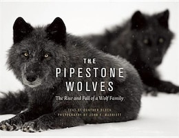 Book The Pipestone Wolves: The Rise and Fall of a Wolf Family by Günther Bloch