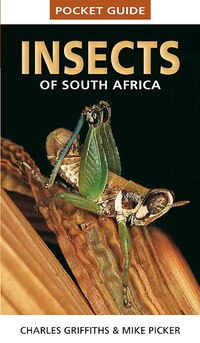 Pocket Guide: Insects Of South Africa