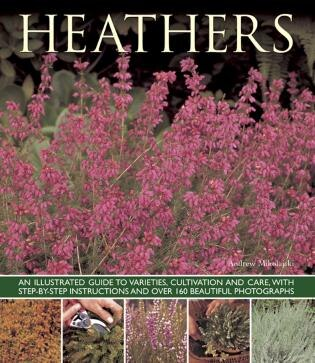 Heathers: An Illustrated Guide To Varieties, Cultivation And Care, With Wtep-by-step Instructions And Over 16 by Andrew Mikolajski